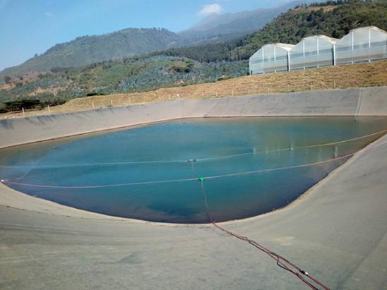 basin-2-algea-control-h2o-europe